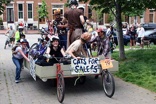 baltimore kinetic sculpture race 2007 race report cats for sale 5 cats for sale 500x333